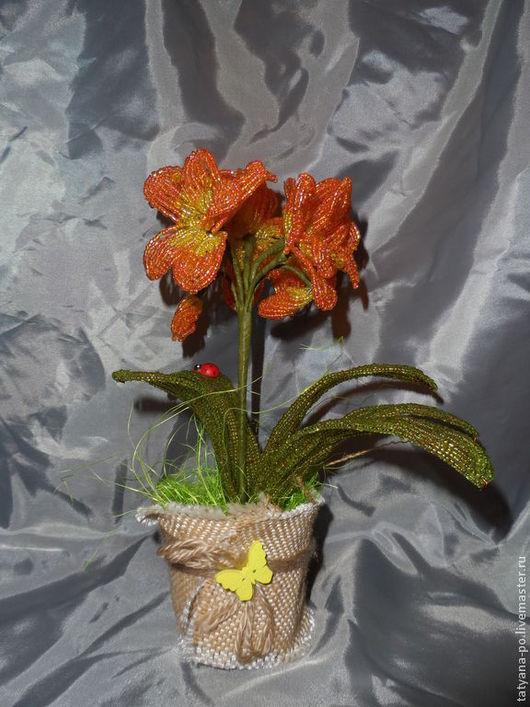 Цветы ручной работы. Ярмарка Мастеров - ручная работа. Купить Кливия из бисера. Handmade. Подарок, кливия, Бисероплетение