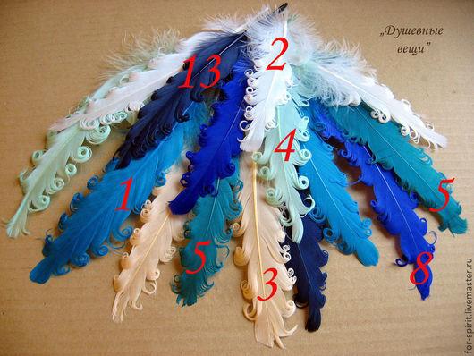 Другие виды рукоделия ручной работы. Ярмарка Мастеров - ручная работа. Купить Кудрявые перья (17 цветов). Handmade. Перья