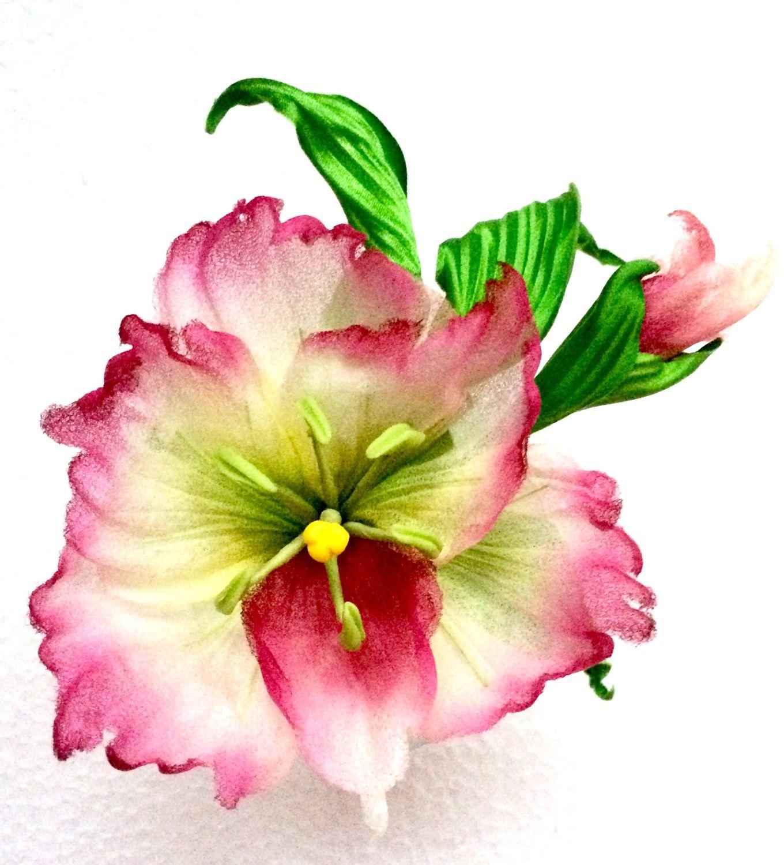 Цветы гладиолус японский купить цветы из стеклакупить