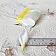 Лепестки плюмерии My Thai Материалы для флористики из Таиланда