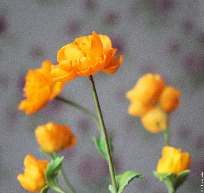 Цветы бубенчики
