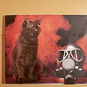 Фотокартины ручной работы. Ярмарка Мастеров - ручная работа Большой котенок. Handmade.