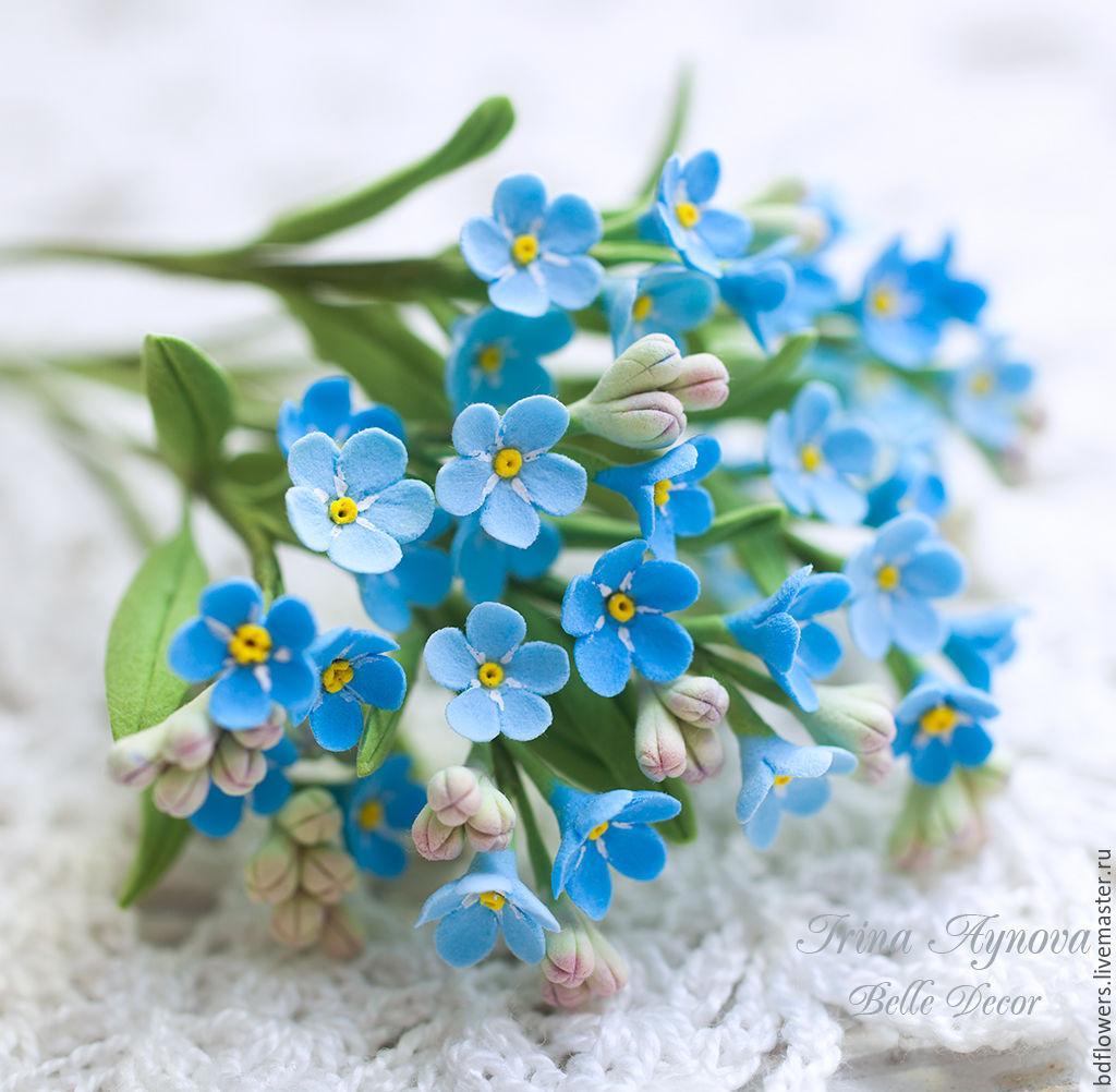 Незабудки букет купить спб, трость фото цветы