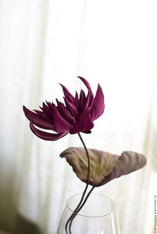 Цветы из шелка Водяная лилия, Цветы, Петергоф, Фото №1