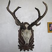 Для дома и интерьера ручной работы. Ярмарка Мастеров - ручная работа Медальон для охотничьих трофеев дуб1. Handmade.