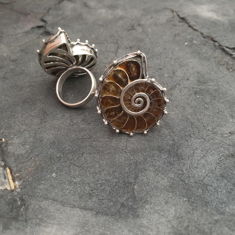 Кольцо с аммонитом, Кольца, Омск,  Фото №1