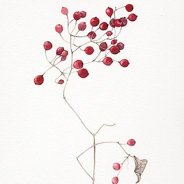 Картины и панно ручной работы. Ярмарка Мастеров - ручная работа Картина акварелью Красные ягоды. Handmade.