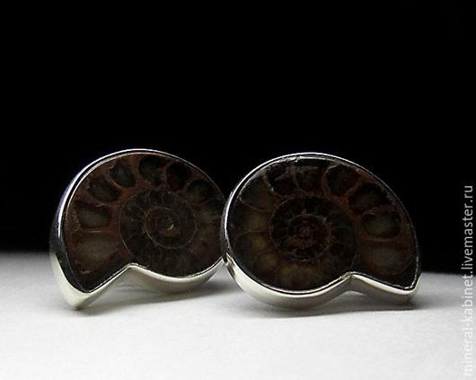 Серебряные серьги пусеты с натуральными природными аммонитами (месторождение камня - Рязанская область) в оправе из серебра 925 пробы, вес изделия 6,4 грамма, размер вставок 15 х 20 мм, код 3990