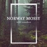 декоративный мох (norwaymossy) - Ярмарка Мастеров - ручная работа, handmade