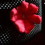 """Украшения ручной работы. Ярмарка Мастеров - ручная работа Брошь """"Физарелла"""". Handmade."""