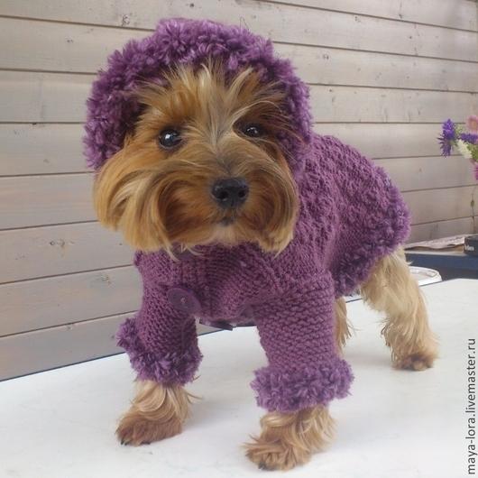 """Одежда для собак, ручной работы. Ярмарка Мастеров - ручная работа. Купить Одежда для собак. Вязаная курточка """"Мечта"""". Handmade. Брусничный"""