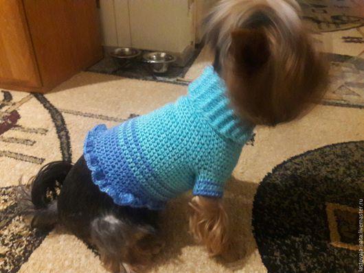 Одежда для собак, ручной работы. Ярмарка Мастеров - ручная работа. Купить Свитерок для собачки. Handmade. Синий, свитер теплый, на осень