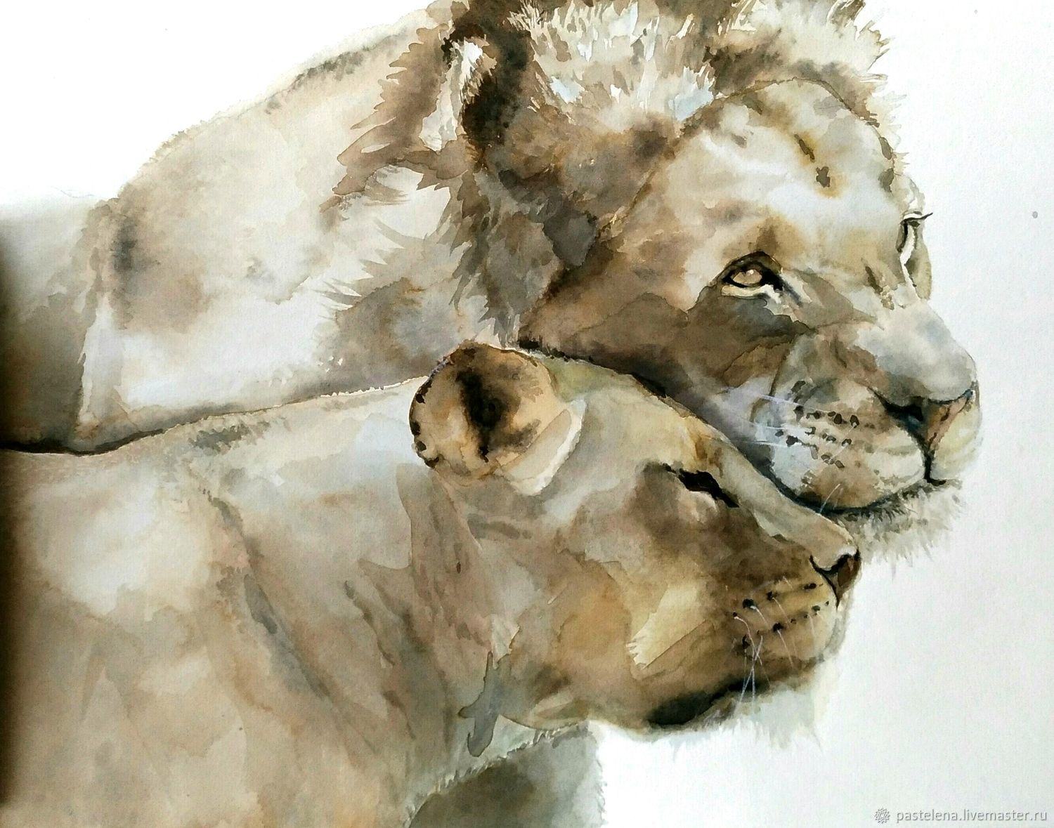 Watercolor painting Wild cats (gray beige brown gift to lions), Pictures, Yuzhno-Uralsk,  Фото №1