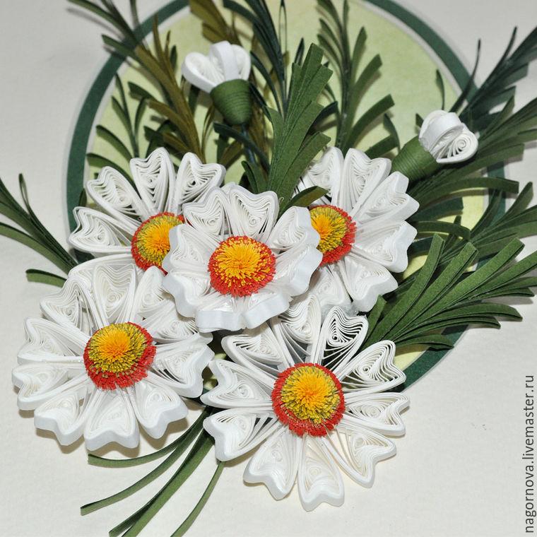 Фото декоративные ромашки