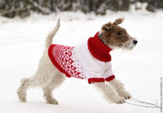 Одежда для собак, ручной работы. Ярмарка Мастеров - ручная работа. Купить Свитер для собаки. Handmade. Ярко-красный, одежда для кошек