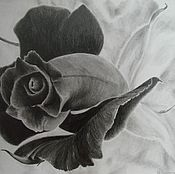 Картины и панно handmade. Livemaster - original item Picture of graphics Black rose pattern with a pencil. Handmade.