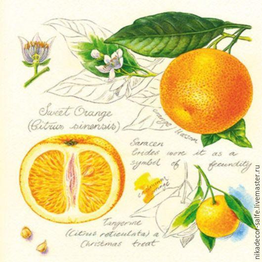 Декупаж и роспись ручной работы. Ярмарка Мастеров - ручная работа. Купить Сочные апельсины (SDL993000) 33х33 салфетка для декупажа. Handmade.