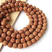 Материалы для творчества handmade. Livemaster - original item Beads the seeds of the Rudraksha tree Elaeocarpus Nepal 11-12mm. Handmade.