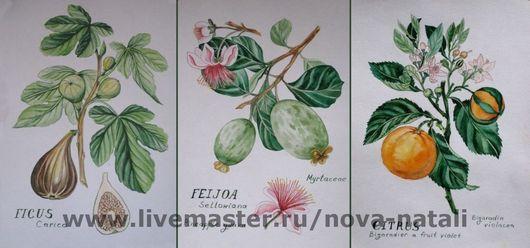 Картины цветов ручной работы. Ярмарка Мастеров - ручная работа. Купить Арт ботаника (Инжир, фейхоа, мандарин). Handmade. Фейхоа