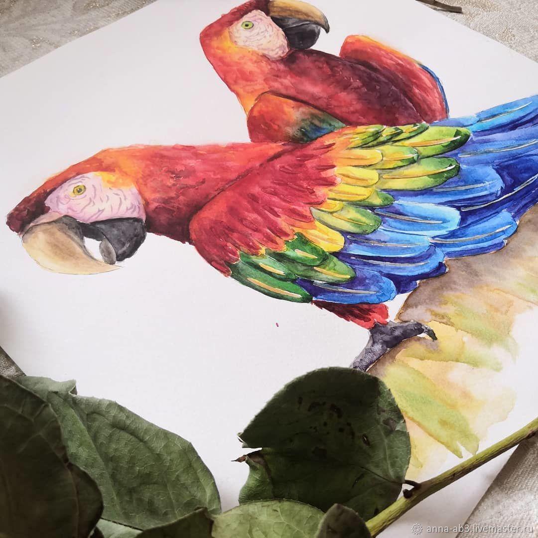 Иллюстрация: Два попугая, Иллюстрации, Нижний Новгород,  Фото №1