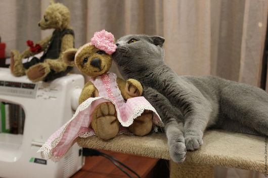 Мишки Тедди ручной работы. Ярмарка Мастеров - ручная работа. Купить Скромная и любознательная мишка Люси. Мишка тедди, teddy bear.. Handmade.