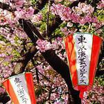 Sakurachiru - Ярмарка Мастеров - ручная работа, handmade