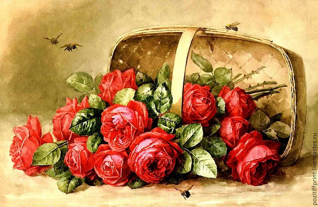 Фото букетов цветов крупным планом розы спокойные