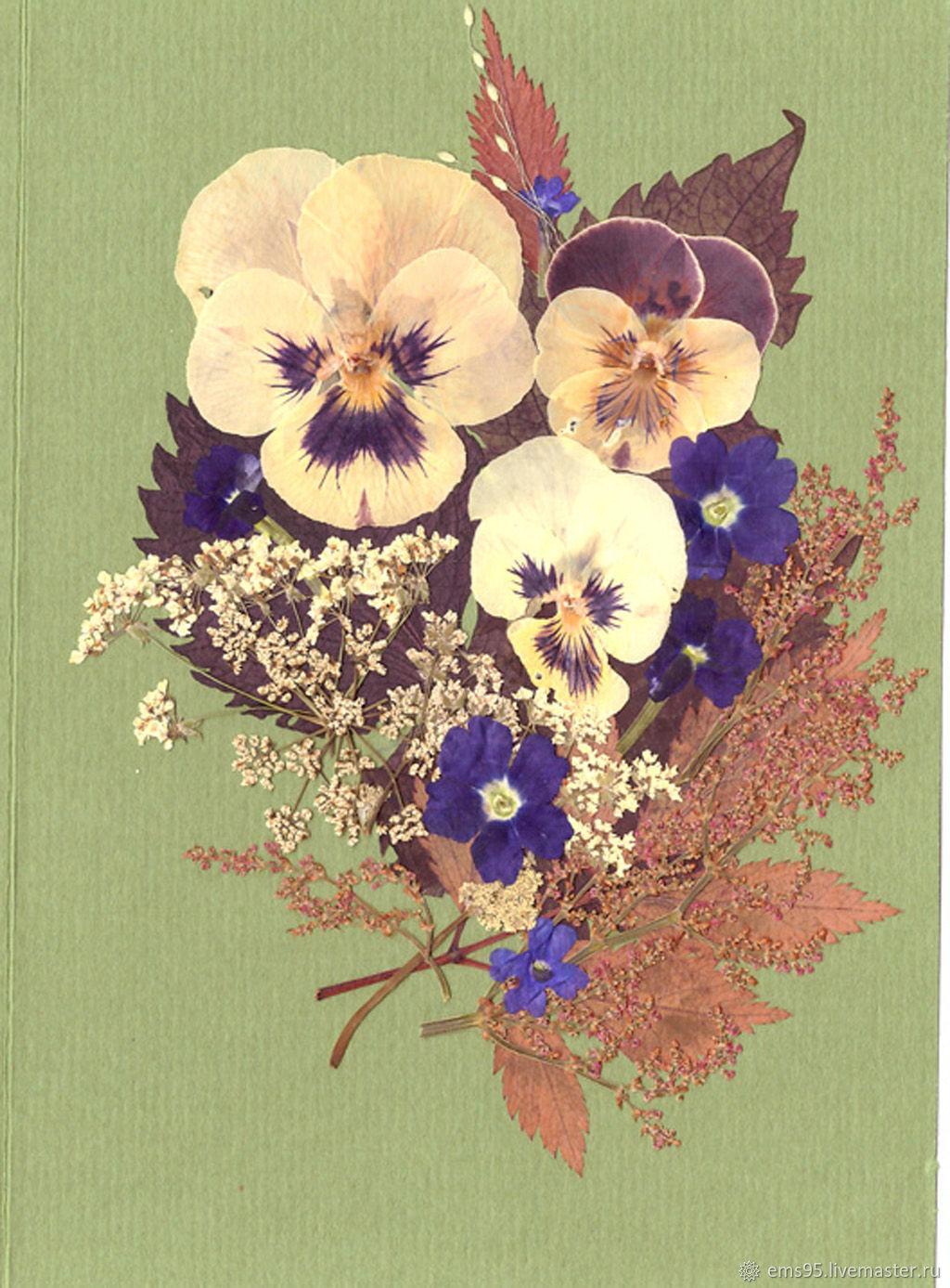 Открытка из сухих цветов