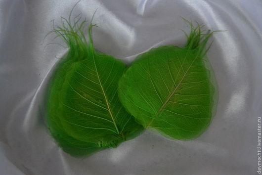 Скелетированные листья зеленые Размер : 7-11 см Цена: 10 шт. - 45 руб.