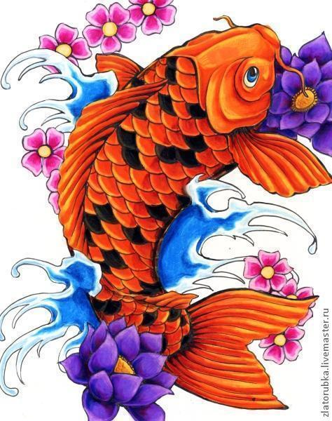 Рыба дракон Арована.