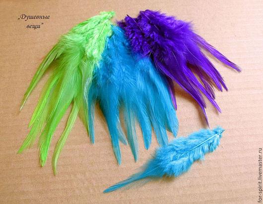 Другие виды рукоделия ручной работы. Ярмарка Мастеров - ручная работа. Купить (10 шт) Перья петуха (13 цветов). Handmade.
