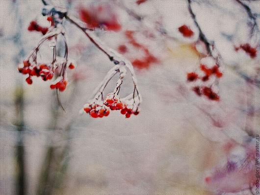 Фотокартины ручной работы. Ярмарка Мастеров - ручная работа. Купить Фотокартина Рябина пламенеет на белом, снежном одеяле декабря.... Handmade.