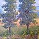 Пейзаж ручной работы. Картина маслом   Летний солнечный пейзаж.. Надиров Азат. Интернет-магазин Ярмарка Мастеров. Оранжевый