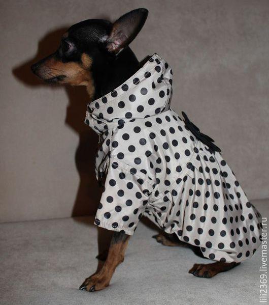 """Одежда для собак, ручной работы. Ярмарка Мастеров - ручная работа. Купить Плащик для собаки """"ШАРМ"""". Handmade. Разноцветный, Йоркширский терьер"""