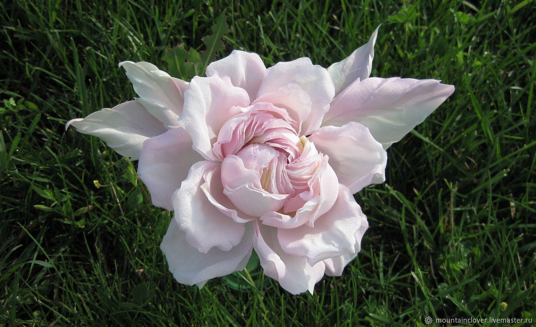 Цветы из шелка. Роза из шелка. Брошь, Броши, Казань, Фото №1