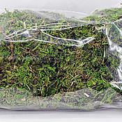 Материалы для творчества handmade. Livemaster - original item moss natural. Handmade.