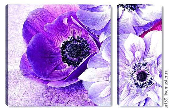 Purple flowers, Pictures, St. Petersburg,  Фото №1