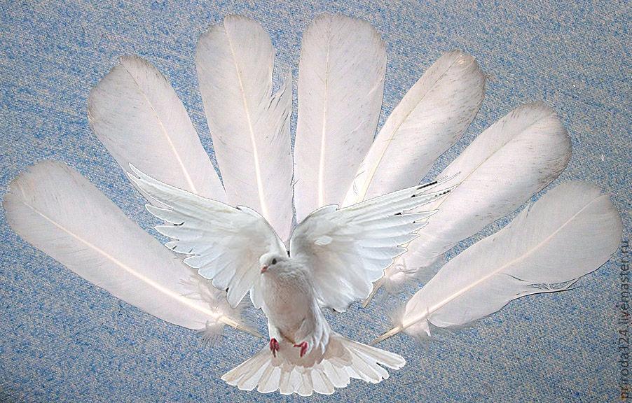 Голуби из перьев своими руками