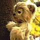Мишки Тедди ручной работы. Заказать Котик Грязныш. Мишки Teddyscharm Беленькой Елены. Ярмарка Мастеров. Авторская ручная работа