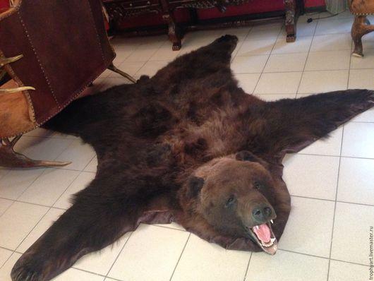 Ковер из шкуры медведя.