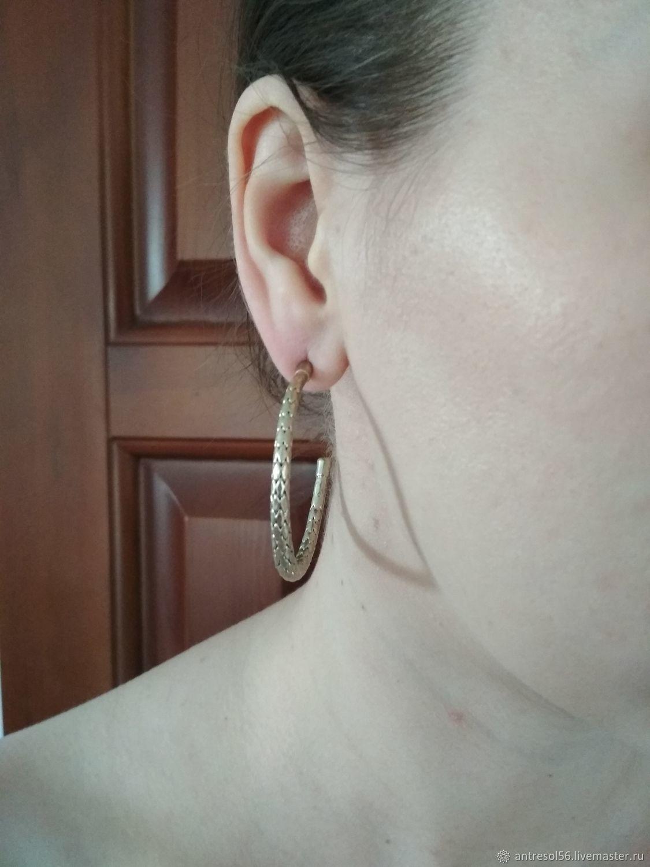 Vintage earrings 'Reptile', Vintage earrings, Orenburg,  Фото №1