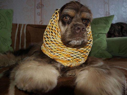 Аксессуары для собак, ручной работы. Ярмарка Мастеров - ручная работа. Купить Шапочка для спаниеля. Handmade. Комбинированный, собака
