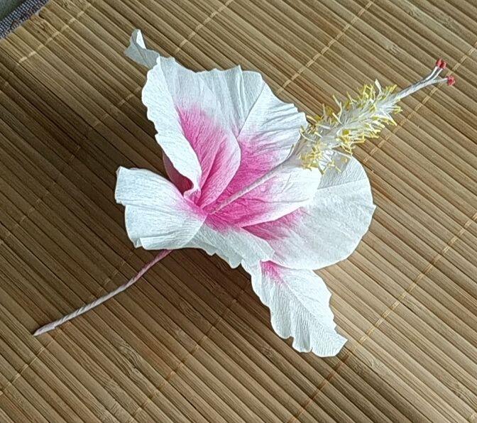цветок из бумаги, Цветы, Москва, Фото №1