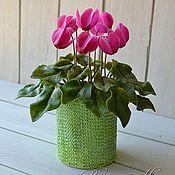 Цветы и флористика ручной работы. Ярмарка Мастеров - ручная работа цикламен из полимерной глины,холодный фарфор. Handmade.