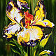 Oil painting of iris, Pictures, Moscow,  Фото №1