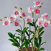 Цветы и флористика ручной работы. Ярмарка Мастеров - ручная работа Орхидея  из полимерной глины Гармония. Handmade.