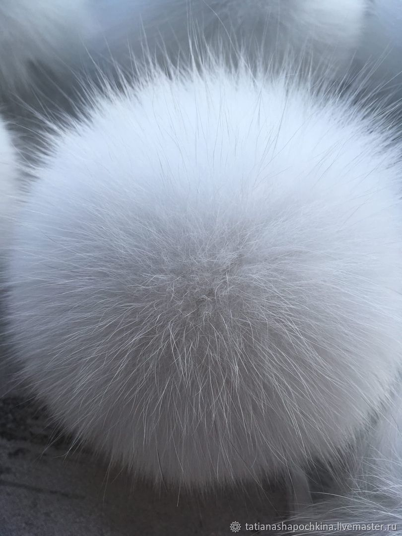POM-poms: Snow white Arctic Fox, Pompons, Arkhangelsk,  Фото №1