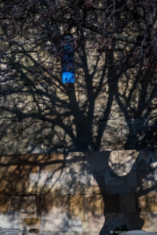 Отражение Души Джвари, Фотокартины, Санкт-Петербург,  Фото №1