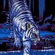 """Вышивка ручной работы. Ярмарка Мастеров - ручная работа. Купить Набор для вышивания бисером """"Тигр в воде"""". Handmade. Тёмно-синий"""