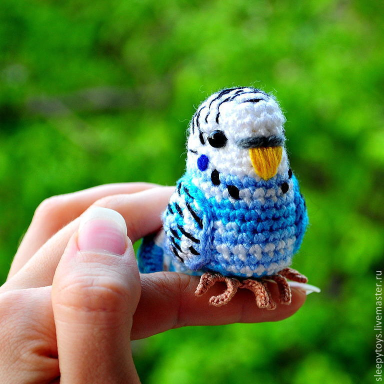 Волнистый попугай крючком